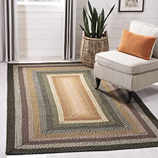 Safavieh Braided Collection Multicolored Area Rug, 2' x 3'