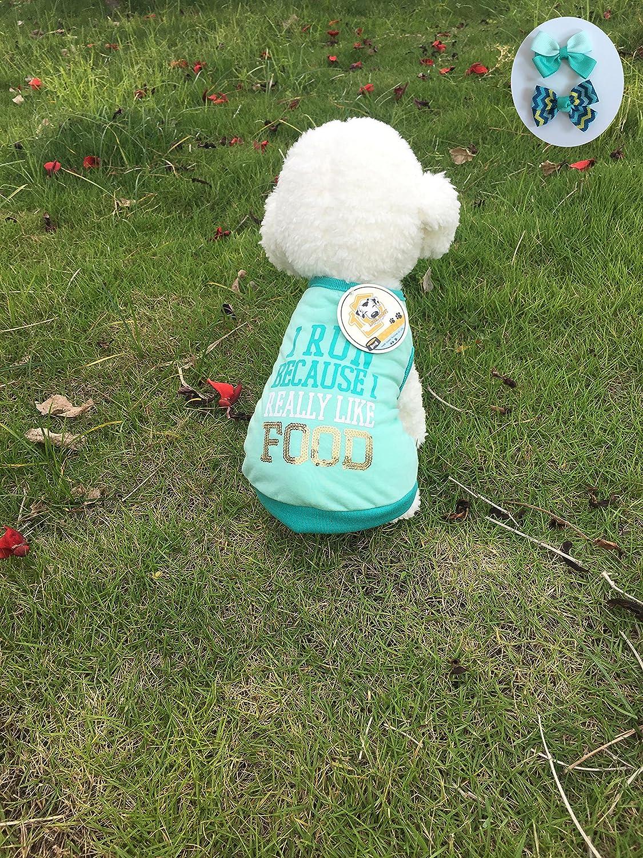 Angel Doggy.INC Dog TShirt Small & Medium Dogs Apparel Trendy Dogs' ClothesSpring,Summer&Autumn pet wearSport Shirt (S)