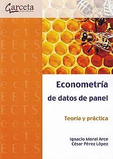 Amazon.com: The Panel - Spanish