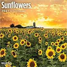 2021 Sunflowers Wall Calendar by Bright Day, 12 x 12 Inch, Yellow Flower Floral