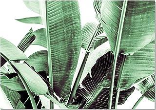 Panorama Tableau sur Toile Feuilles de Bananier 70x50 cm - Imprimée sur Toile Grande qualié - Décoration Tropicale - Table...