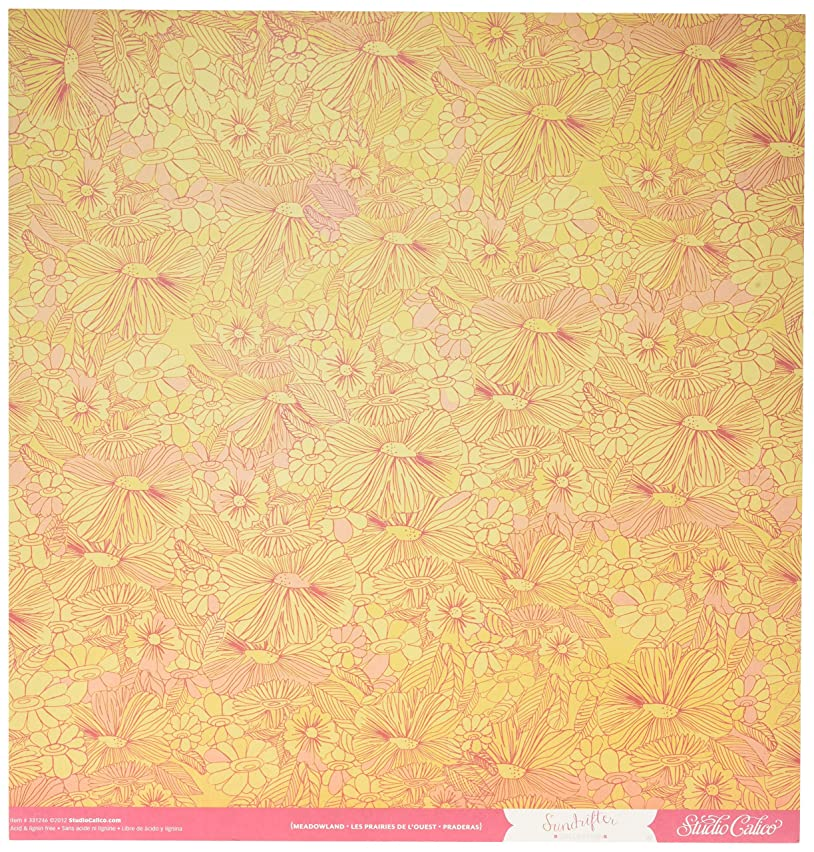 American Crafts Sundrifter Double-Sided Cardstock 12