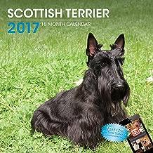 LittleGifts Scottish Terrier 2017 Calendar (3064)