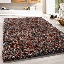 Hoogpolig vloerkleed shaggy tapijt zacht taupe beige blauw kleurig gemêleerd, kleur:Terra, Groote:200x290 cm