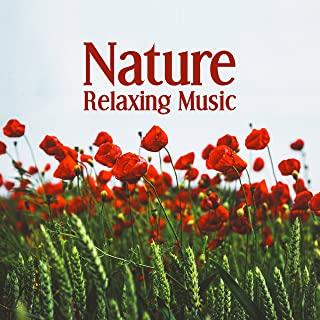 Nature Relaxing Music – Nature Sounds to Relax, Mind Rest with New Age Music, Sweet Memories