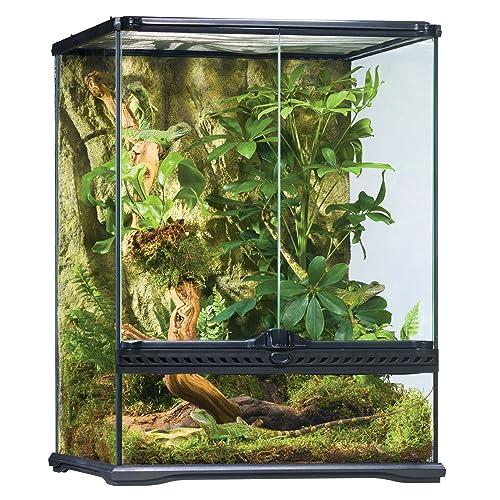 Chameleon Habitat Amazon Com