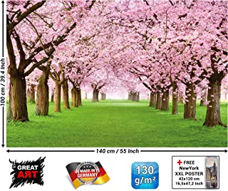 Poster – Cherry Blossom Tree – Decorative Wall Poster of Spring Nature Landscape Avenue Cherry Blossoms Sakura Bloom Flowers Wallposter Photoposter Mural (55 x 39.4 Inch / 140 x 100 cm)