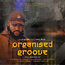 Organized Groove (Incl.Remixes)