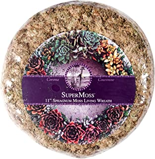 SuperMoss (22341) Sphagnum Moss Living Wreath - Round, Natural/Organic, 11
