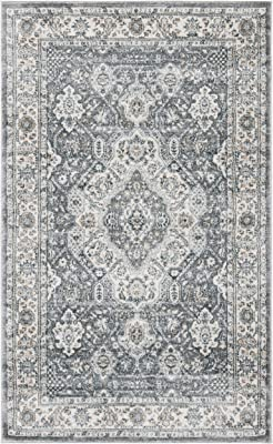 Safavieh Isabella Collection ISA916F Area Rug, 3' x 5', Grey/Cream