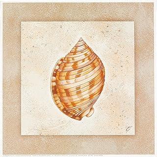 Eurographics ELR1003 Fine Art Print Scotch Bonnet av Rahim E. 30 x 30 cm