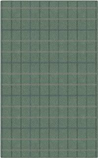 Brumlow Mills Muted Green Plaid Rug, 3'4