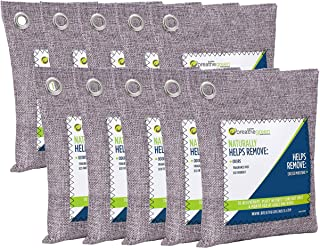 Breathe Green Charcoal Odor Eliminator Bags (10-Pack) | Activated Bamboo Charcoal Deodorizer | Natural Freshener Removes Odor &Moisture | Odor Eliminator for Car, Closet, Bathroom, Gym Bag, Shoes