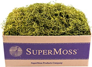 SuperMoss (27012) Spanish Moss Preserved, Chartreuse, 3lbs
