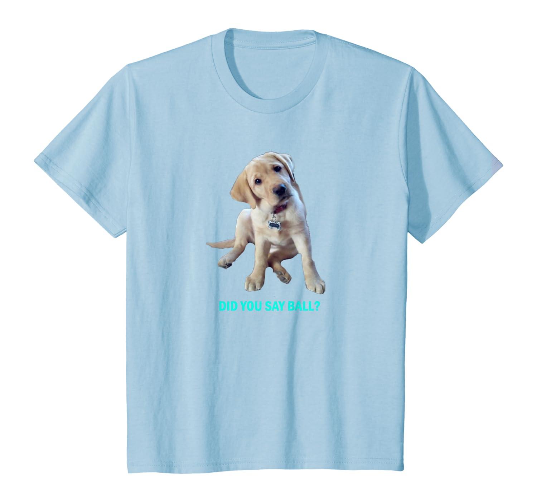 Labrador Retriever Did you say ball? T-Shirt Youth