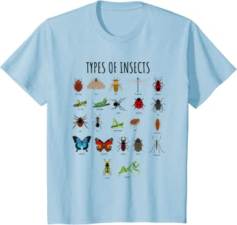 Kids Types Of Insects Bug Identification Science T-Shirt