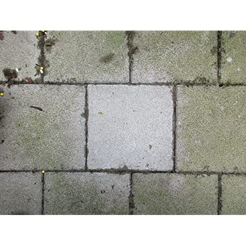 Prächtig Moosentferner Pflasterstein: Amazon.de &PU_21