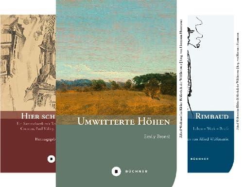 Alfred Wolfensteins Kleine Bibliothek der Weltliteratur (Reihe in 4 Bänden)