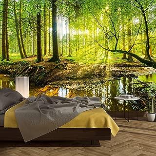 murimage Papel Pintado Bosque 366 x 254 cm Fotomurales Vista 3D Madera árboles luz del Sol Sala Living Oficina Dormitorio Incluye Pegamento