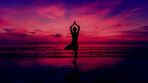 『Yoga TV』の15枚目の画像