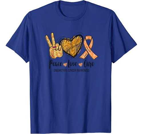 Peace Love Cure Endometrial Cancer Awareness Funny Gift T Shirt