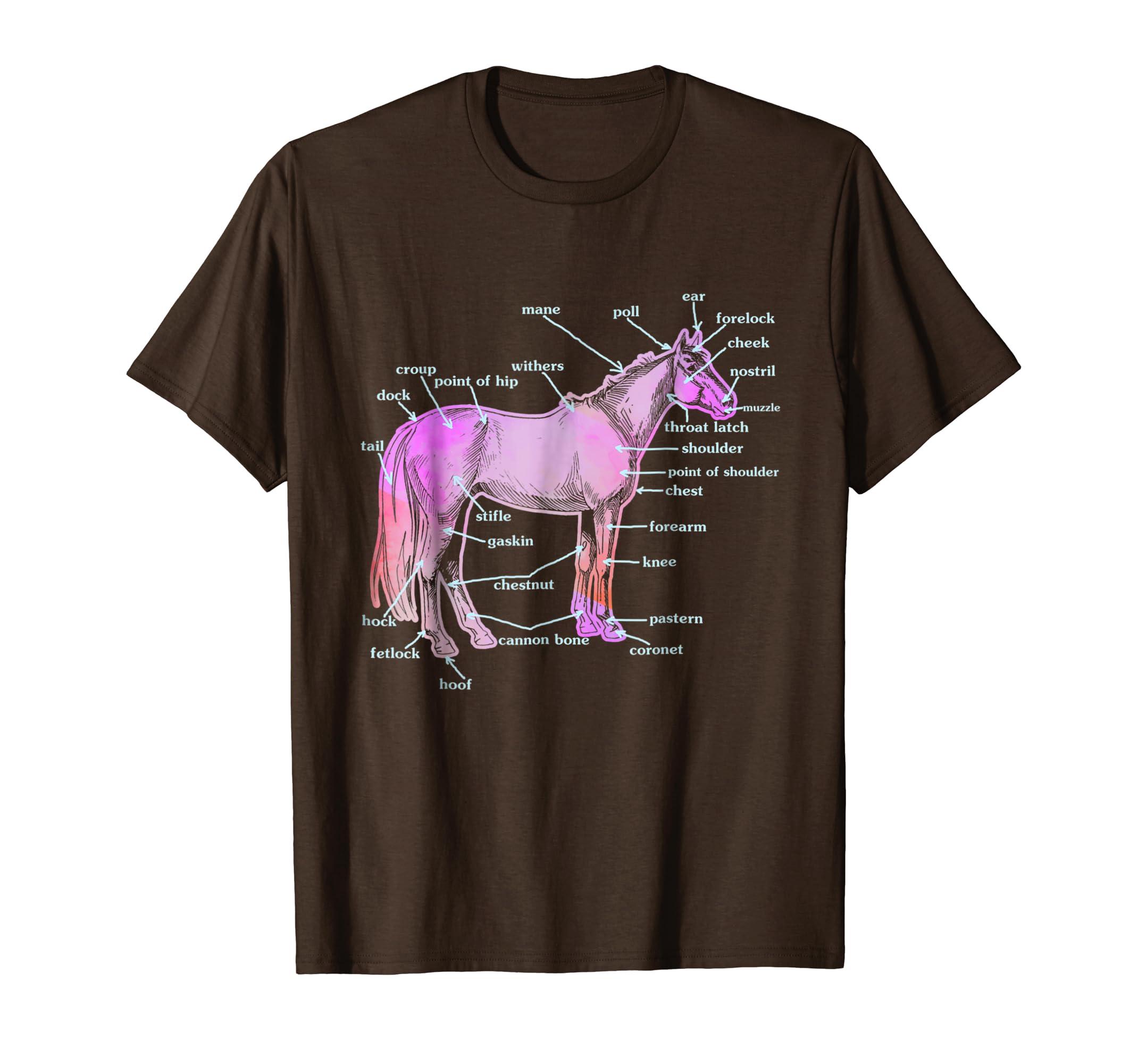 Amazon Horse Tshirt Horse Anatomy Shirt Clothing