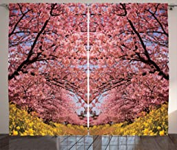 Best sakura spring garden Reviews