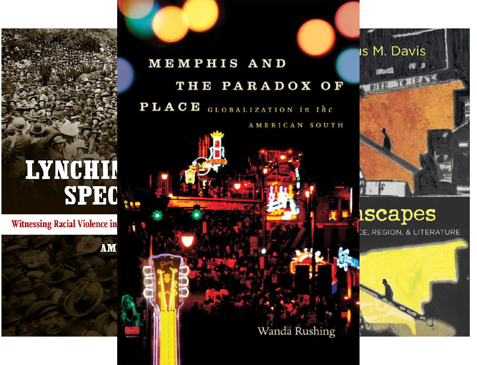 New Directions in Southern Studies (12 Book Series)