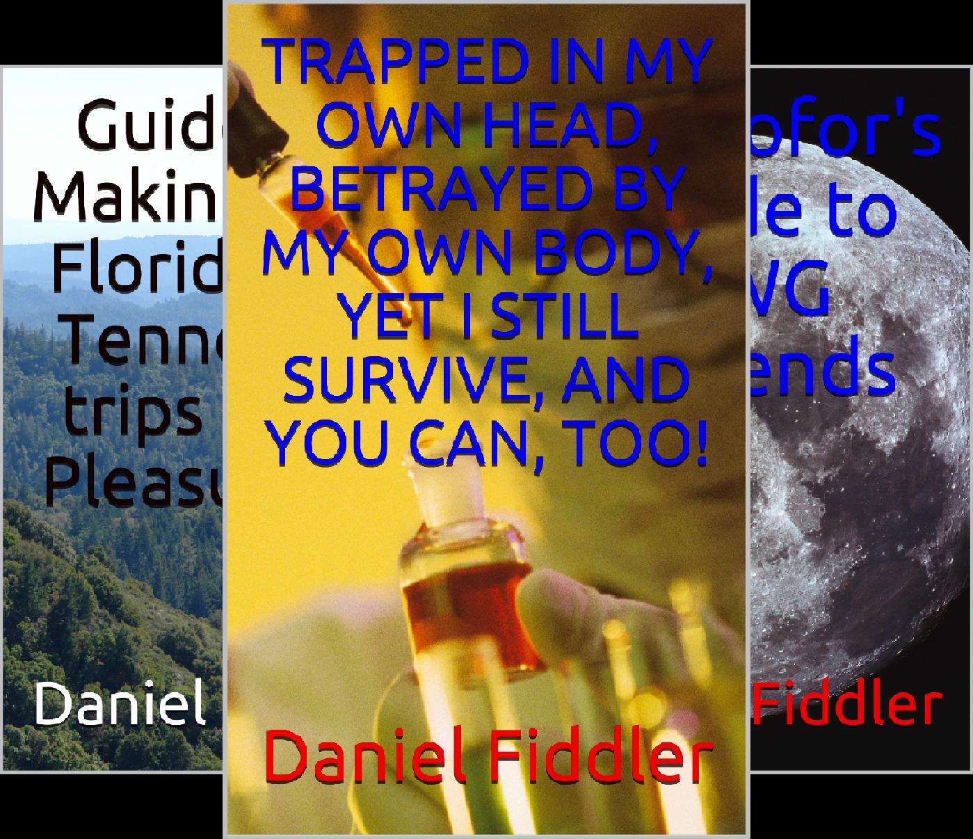 Daniel Fiddler's Books / E-books (6 Book Series)