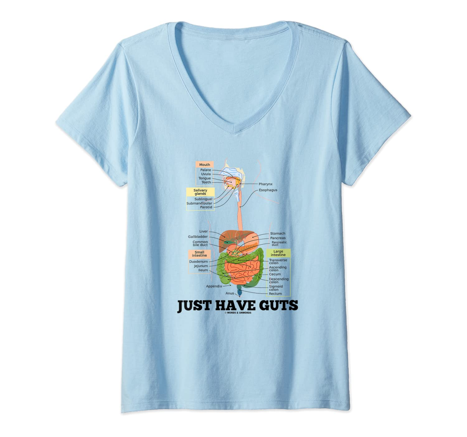 Just Have Guts Digestive System Anatomical Advice Geek Humor T-shirt