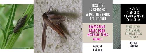 Wildlife: Brazos Bend State Park, Texas (23 Book Series)