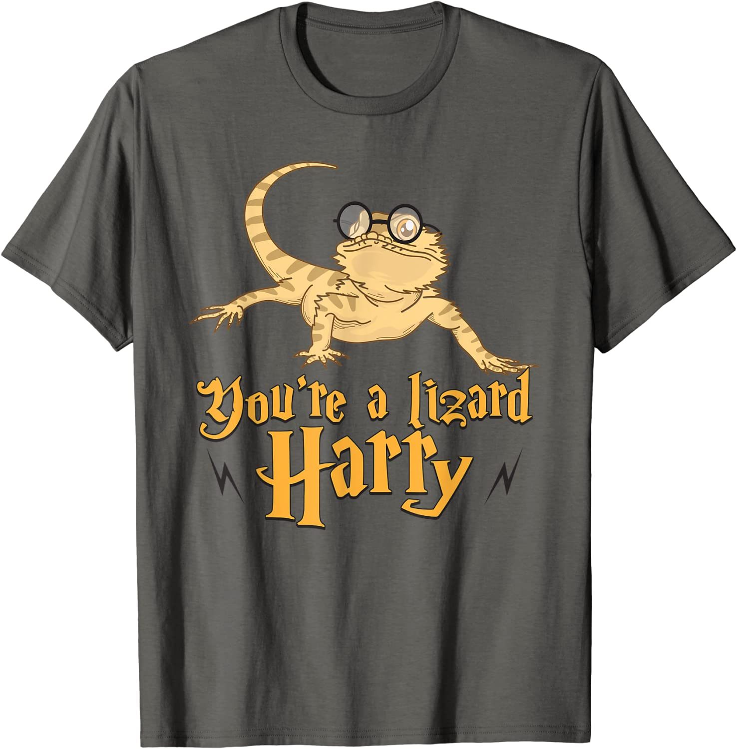 You're A Lizard Harry Ranking TOP14 T-Shirt - Bookworm Fantasy Gift Spring new work one after another T-Shi Idea