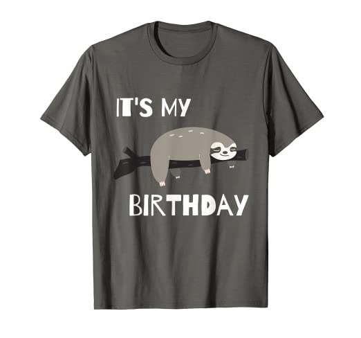 bc8ea39d0 Amazon.com  Sloth Birthday T-Shirt  Clothing