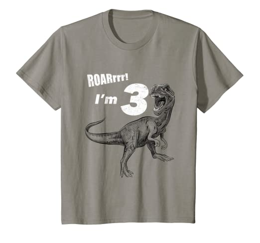 10b28c0a Image Unavailable. Image not available for. Color: Kids Kids 3rd Birthday  Dinosaur Gift T-Shirt for 3 Year Old Boys