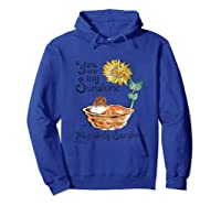 You Are My Sunshine Scotch Collie T Shirt, Sunflower And Sco Hoodie Royal Blue
