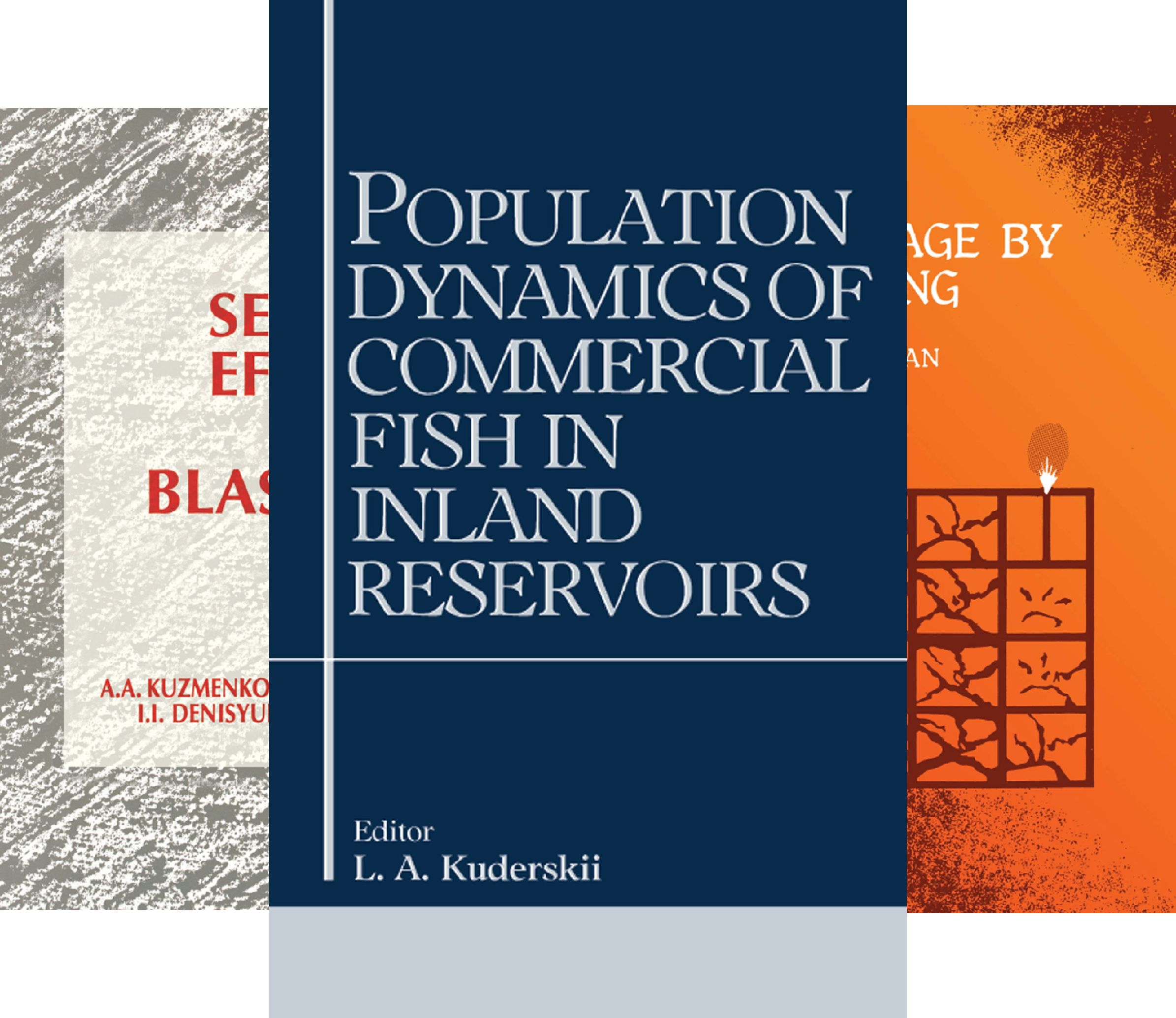 Russian Translations (8 Book Series)