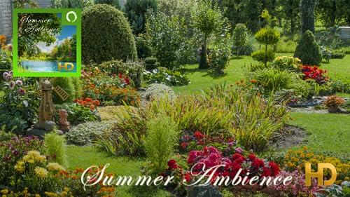 『Summer Ambience HD』のトップ画像