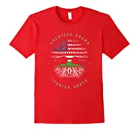 American Grown Iranian Roots Iran Flag T-shirt Red