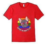 French Bulldog Gay Pride Lgtb Rainbow Flag Sunset Gay Gift T-shirt Red