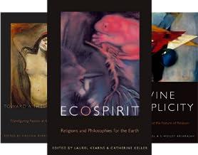 Transdisciplinary Theological Colloquia (8 Book Series)