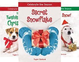 Celebrate the Season (4 Book Series)