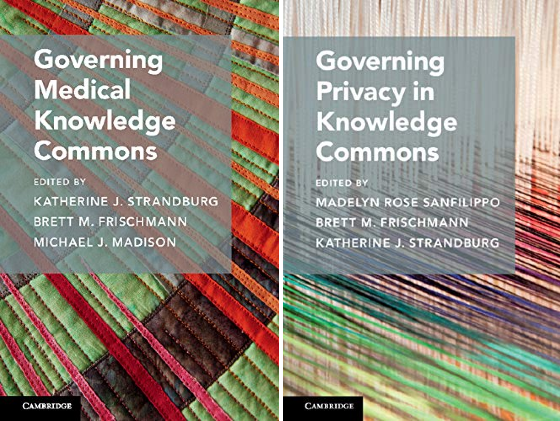 Cambridge Studies on Governing Knowledge Commons (2 Book Series)