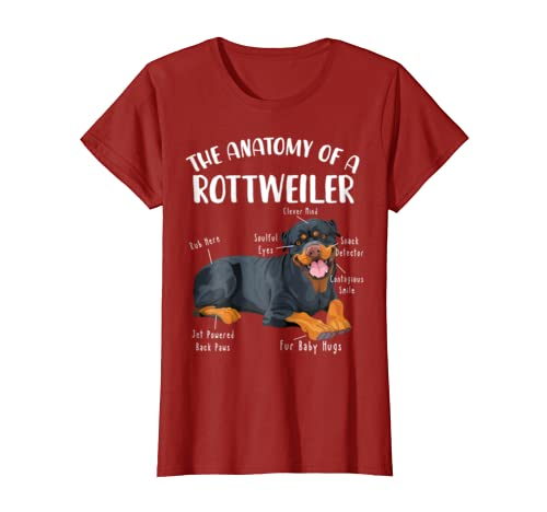 Amazon The Anatomy Of A Rottweiler Shirt Rescue Rottie Mom Dad Clothing