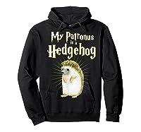My Patronus Is A Hedgehog Harry Fan Cute Gift Shirts Hoodie Black