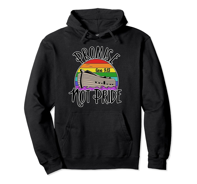 Noah's Ark Genesis 9:13 Rainbow God's Promise Not Pride Pullover Hoodie