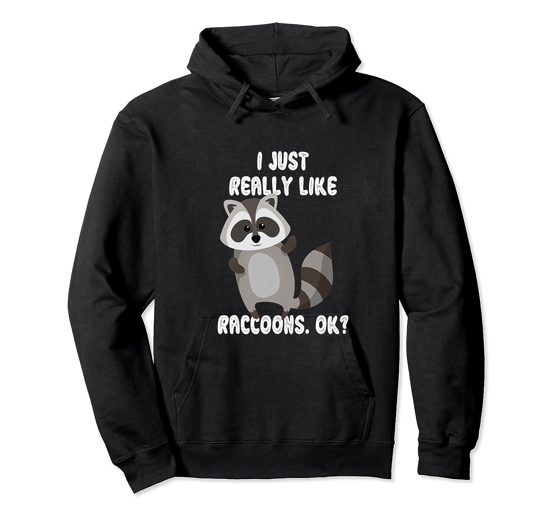 I Just Really Like Raccoons Ok Raccoon Lover Gift Tshirt Unisex Pullover Hoodie