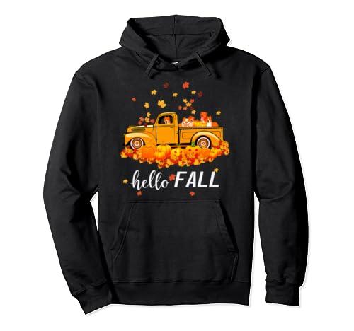 Hello Fall Pitbull Funny Halloween Pitbull Lover Gift Pullover Hoodie