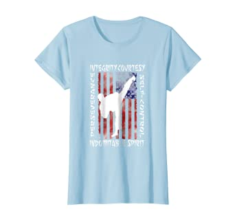 954e9c733a Amazon.com: Taekwondo Shirt 5 Tenets Taekwon-do Martial Arts Kick White:  Clothing