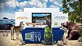 Zoom IMG-1 4k nature relax tv