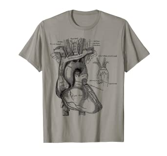 7efa49219 Image Unavailable. Image not available for. Color: Vintage medical Human  Heart T-Shirt Anatomy Illustration